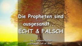 DAS SAGT DER HERR - Die echten und falschen Propheten sind ausgesandt - TROMPETE GOTTES