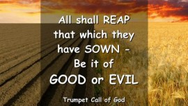 THUS SAYS THE LORD - All shall Reap what they have sown - Be it of Good or Evil - TRUMPET CALL OF GOD