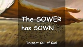 Thus says the Lord - The Sower has sown yet the Seeds fell among Thorns and on stony Places