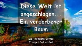 2006-04-17 Ermahnung des Herrn - Die Welt ist angeschlagen - Ein verdorbener Baum - TROMPETEN RUF GOTTES-1280