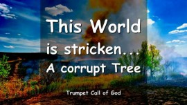 2006-04-17 The Lords Exhortation - This World is stricken - A corrupt Tree - Trumpet Call of God