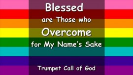 Answers from Jesus regarding Homosexuality... Blessed are Those who overcome for My Name's Sake