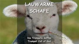 DER HERR SPRICHT zu den lauwarmen Schafen