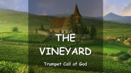 THE LORD SPEAKS about the  Vineyard - TRUMPET CALL OF GOD