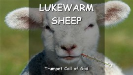 THE LORD SPEAKS to His lukewarm Sheep - TRUMPET CALL OF GOD