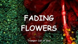 The-Lord-speaks-about-fading-Flowers-Trumpet-Call-of-God