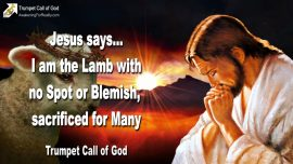 2007-06-26 - Lamb of God without Spot or Blemish sacrificed for Many-Jesus Christ-Trumpet Call of God