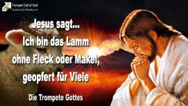 2007-06-26 - Lamm Gottes ohne Fleck oder Makel geopfert fur Viele-Jesus Christus-Trompete Gottes
