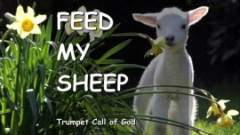 THUS SAYS THE LORD - Feed My Sheep - TRUMPET CALL OF GOD