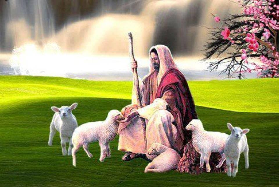 Trumpet Call of God - The Shepherd and his Sheep