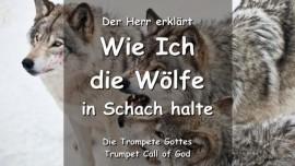 WIE ICH DIE WOELFE IN SCHACH HALTE-Der Herr erlaeutert TROMPETEN RUF GOTTES