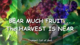 2005-04-21 - The Lord says-Bear much Fruit-The Harvst is near-Trumpet Call of God-Love Letter from God