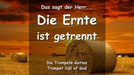 DAS-SAGT-DER-HERR-Die-Ernte-des-Herrn-ist-getrennt-Alle-Buendel-sind-gebunden-Trompeten-Ruf-Gottes