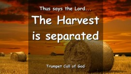 THUS SAYS THE LORD The Harvest is separated All Bundles are set in their places- TRUMPET CALL OF GOD ONLINE