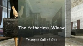 The Fatherless Widow