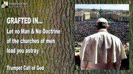 2007-02-02 - Grafted into the Olive tree-Deception-Let no man and no church mislead you-Doctrines-Trumpet Call of God