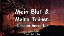 2011-02-14 - Mein Blut und Meine Traenen fliessen herunter-Trompete Gottes-Liebesbrief von Gott
