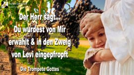 2004-08-31 - Von Gott erwahlt-Eingepfropft in den Zweig von Levi-Sohn von Abraham-Die Trompete Gottes