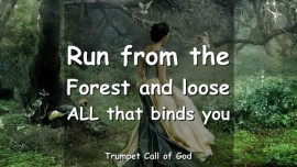 2004-12-23 - The Lord says-Run from the Forest and loose all that binds you-Trumpet Call of God-Love Letter from God
