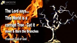 2006-04-17 - This World is a corrupt Tree-Cut it down-Burn the Branches-Trumpet Call of God