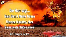 2011-02-14 - Blut Tranen von Jesus-Herz Gottes weint-Wasser-Blut-unrein-Sunde-Tod-Die Trompete Gottes