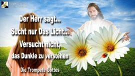 2004-11-14 - nur das Licht suchen-Die Dunklheit meiden-Nicht die Finsternis suchen-Trompete Gottes