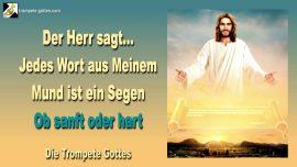 2010-11-18 - Jedes Wort aus dem Mund Gottes ist ein Segen-sanft oder hart-Die Trompete Gottes Jesus Christus